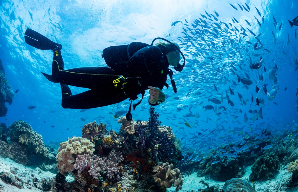 SCUBA DIVING VACATIONS – A GREAT REASON TO EXPAND YOUR DIVING HORIZONS